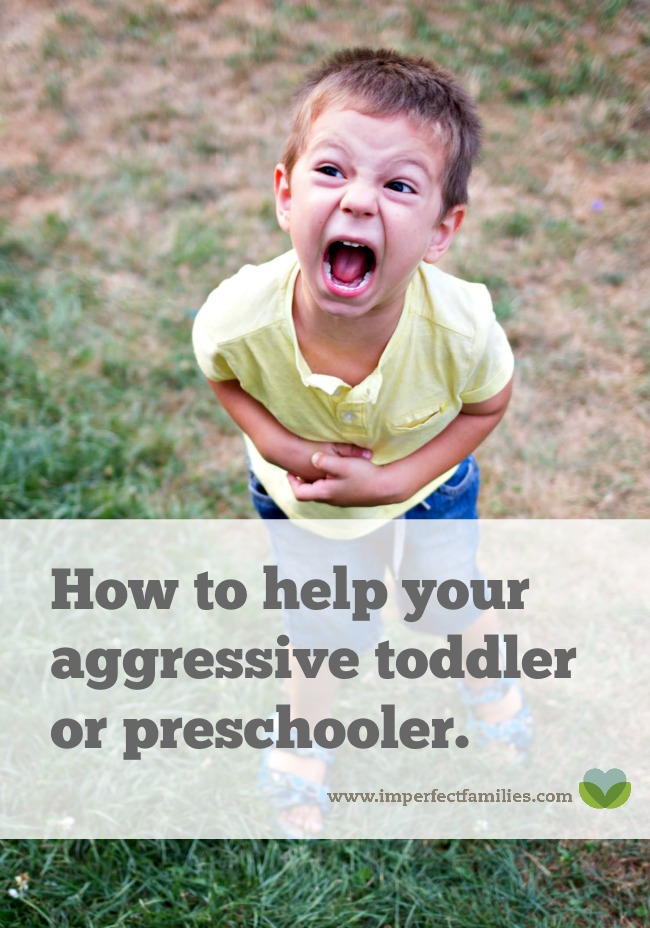 Is your Toddler or Preschooler Hitting, Kicking, Biting? These signs of aggression are actually cries for help. Use these 3 tips to help your child manage their big feelings.