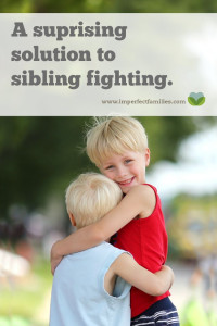 A Surprising Solution to Sibling Fighting