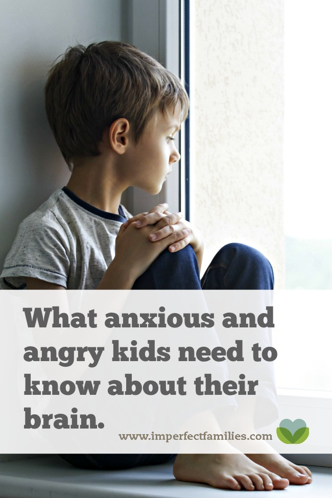 Empower your anxious or angry child by teaching them about their brain using this simple script!