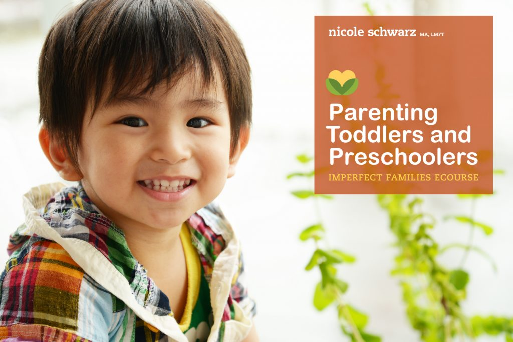 Join the next Parenting Toddlers and Preschoolers ecourse